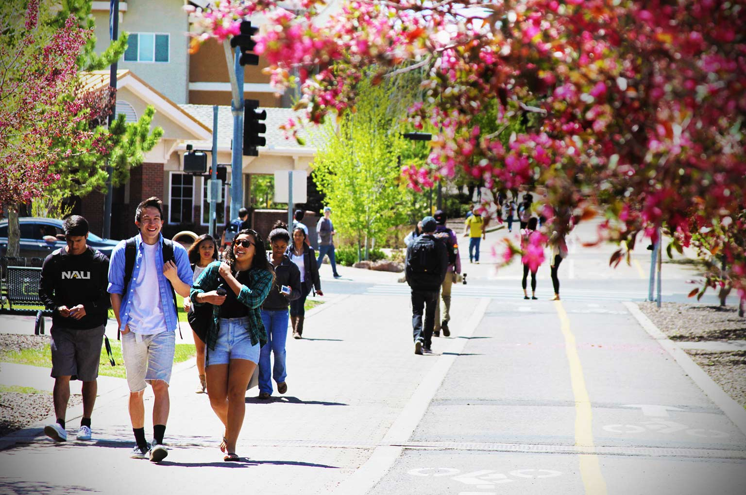The Campaign for NAU Homepage Banner